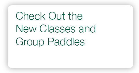 Check Out the New Classes and Paddles